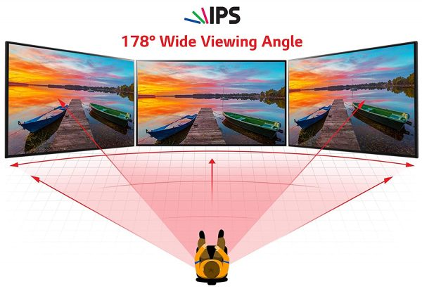LG IPS Monitor 22-Inches Full HD